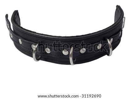Black leather collar with 3 rings and rivets on white background - stock photo