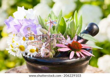 black mortar with healing herbs outdoors, herbal medicine - stock photo