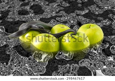 Black nigrita snake on green apples floating in petrol with skull reflections, temptation concept and poison apples concept, pollution and contamination concept. - stock photo