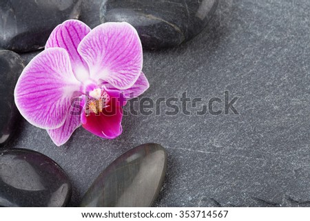 black pebbles and purple orchid on slate - stock photo