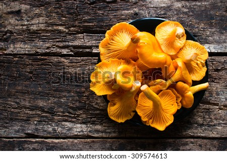 black plate with chanterelle mushrooms - stock photo