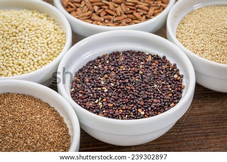 black quinoa and other gluten free grains (amaranth, millet, teff brown rice)  in small ceramic bowls - stock photo