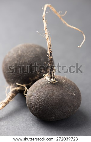 black radishes isolated on grey background - stock photo