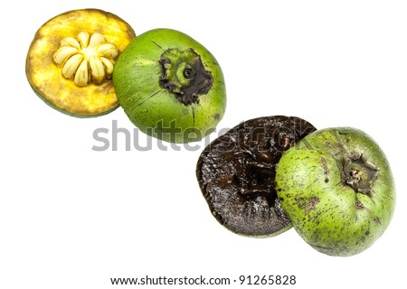 Black sapote - stock photo