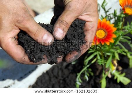 Black soil - stock photo