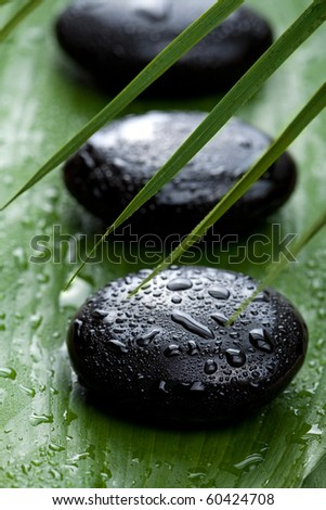 black spa stones and leaves - stock photo