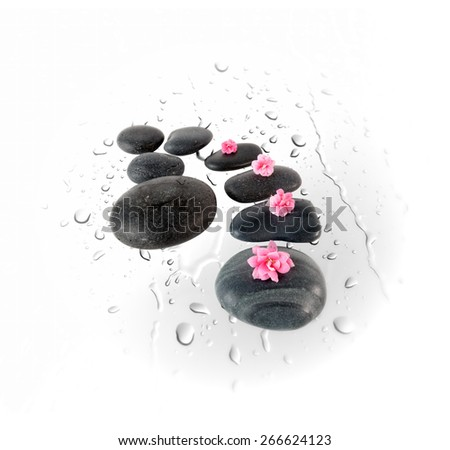 Black spa stones and pink flowers on water drops background  isolated on white. Zen basalt stones.  - stock photo