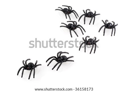 Black toy spiders colony, isolated on white. - stock photo