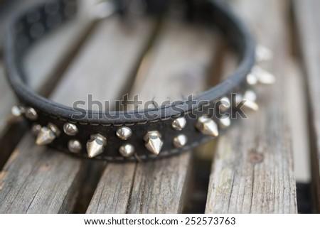 Black with studs collar - stock photo