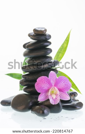 Black zen stones with purple stripe orchid close up - stock photo