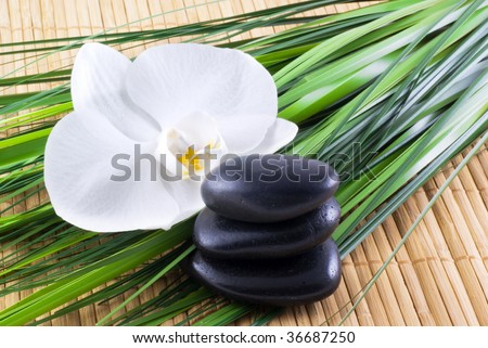 Black zen stones with white orchid and blades of grass on an bamboo background. - stock photo