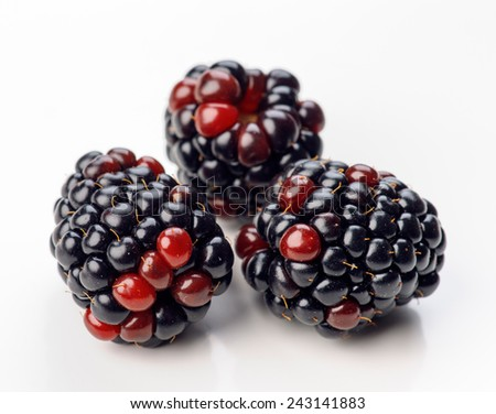 blackberries isolated on white - stock photo
