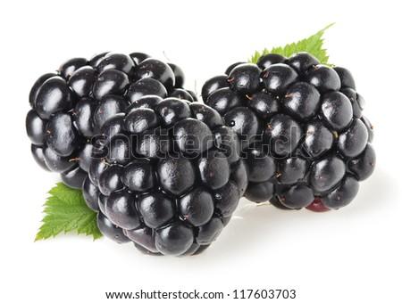 Blackberries on white background - stock photo