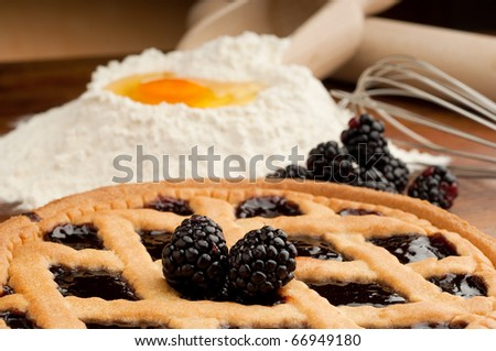 blackberry cake - stock photo