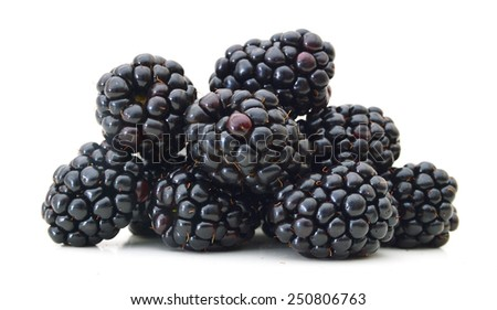 Blackberry isolated on white background  - stock photo