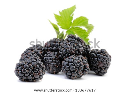 Blackberry with leaf - stock photo