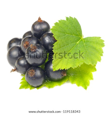 Blackcurrant with Green Leaves Isolated on White Background - stock photo