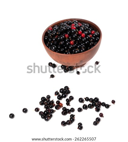 Blackcurrants and redcurrants in ceramic bowl. Isolated on white background. - stock photo