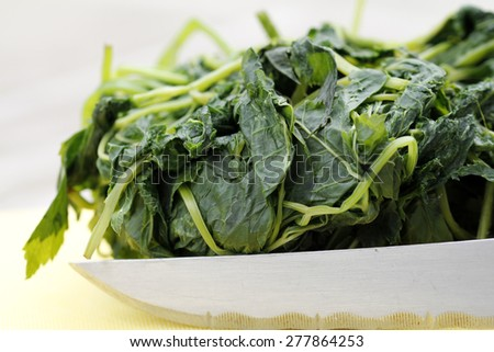 blanched wild herbs for soup - stock photo