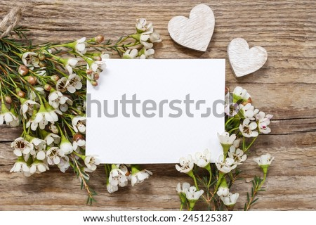Blank card among chamelaucium flowers (waxflower) on wooden background - stock photo