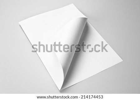 Blank folded sheet of paper with curled corner - stock photo