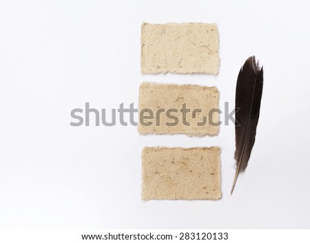 Blank natural color card with black feather on white background horizontal style - stock photo