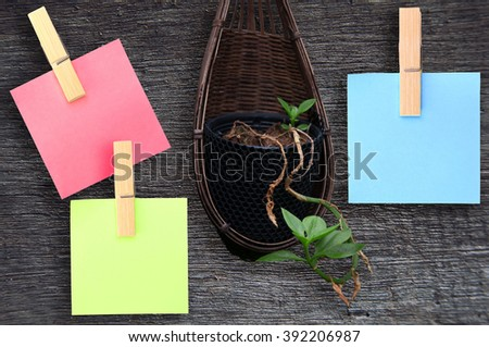 blank note paper and tree on wood desk top view. empty space for text. selective focus. - stock photo