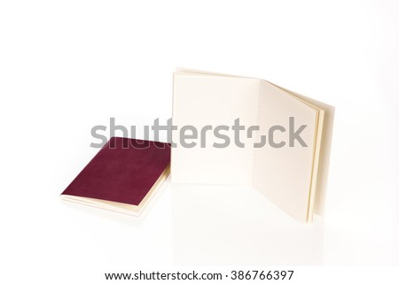 Blank passport  isolated on white background - stock photo