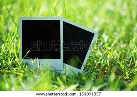Blank photos in grass - stock photo