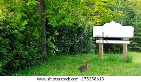 Blank sign with wooden posts surrounded by trees in the summer, with a  rabbit in the foreground. - stock photo