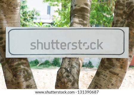 blank signboard on tree - stock photo