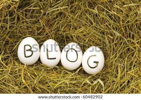 blogg or rss concept with eggs on hey - stock photo