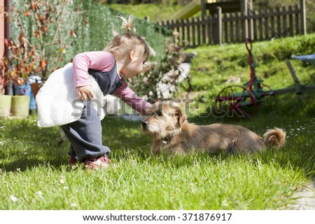 blonde baby two years old age approaching crouching and touching a brown terrier breed dog lying on green grass lawn - stock photo