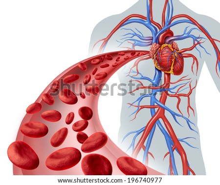 Blood heart circulation health symbol with red cells flowing through three dimensional veins from the human circulatory system as a medical health care icon of cardiology and cardiovascular fitness. - stock photo