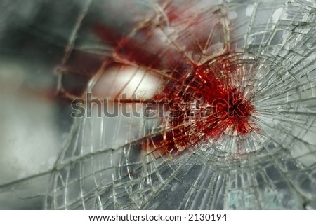 Bloody Windshield (the same windshield is also in my gallery without blood) - stock photo