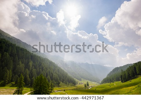 Blooming alpine meadow and lush green woodland set amid high altitude mountain range with dramatic storm clouds. Valle d'Aosta, Italian Alps. - stock photo