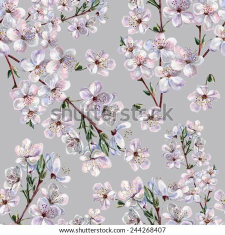 Blooming plum, watercolor - stock photo