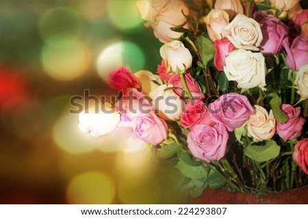 blossom  roses background with bokeh lights - stock photo