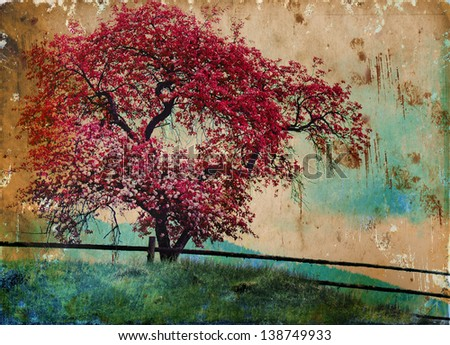 Blossom tree/beautiful spring  background - stock photo