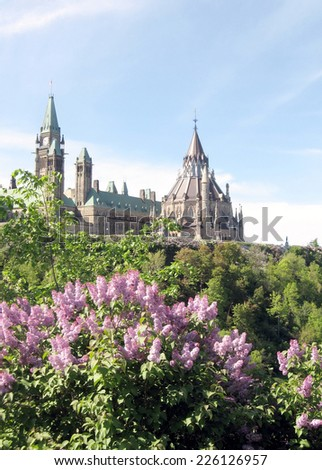 Blossoming lilac bushes on a background of Parliament in Ottawa, Canada - stock photo