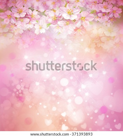 Blossoming sakura tree, floral, spring, bokeh background. - stock photo