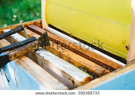Blue beehive with different wooden frames of honeycomb, equipment and bees inside standing in the yard, close up - stock photo