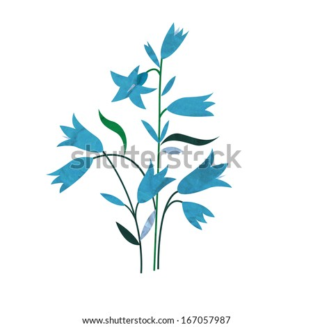 Bell Flowers Drawing Blue Bell Flowers Isolated