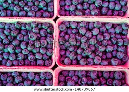 Blue berries - stock photo