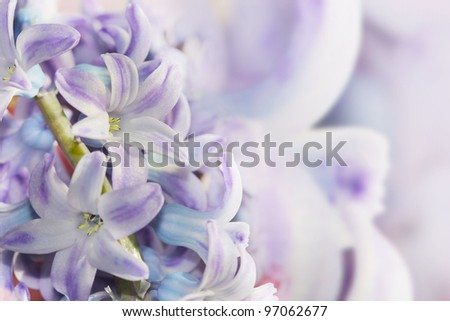 blue blurry flowers made with pink and violet filters - stock photo