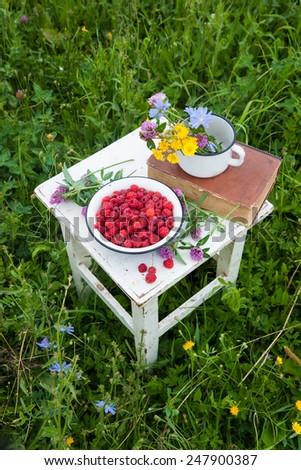 Blue bowl with raspberries, old book and cup with field flowers on the rustic white chair with - stock photo