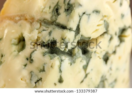 Blue cheese background - stock photo