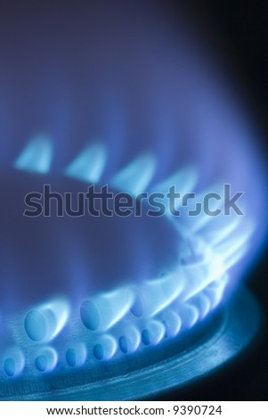 Blue flames of a gas stove in the dark - stock photo