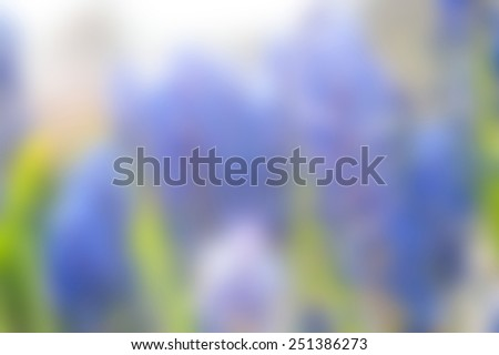 Blue floral background blur. - stock photo