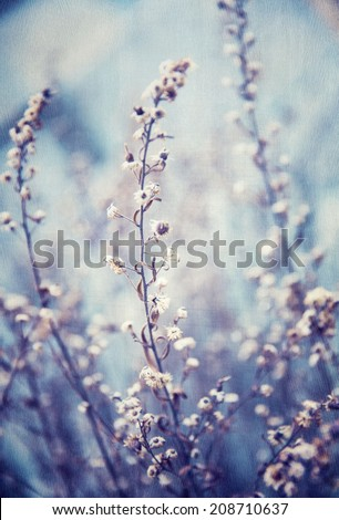 Blue floral background, little gentle flowers, beautiful natural mobile screenrsaver, vintage style image, flowery wallpaper - stock photo